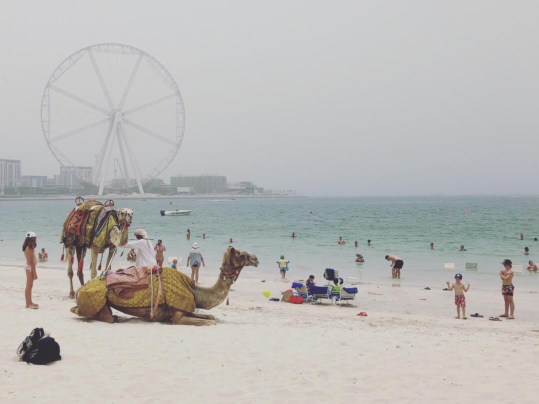 Tem Na Web - Dubai com crianças